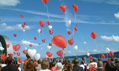 Why You Should Care about Balloon Releases. this has too many times injured and killed animals and ocean life