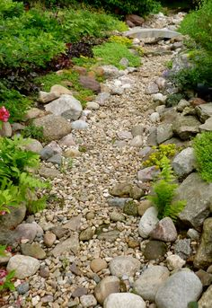 Gorgeous Dry Creek Bed Design - Style Estate -like size and mix of stone Dry Riverbed Landscaping, River Rock Landscaping, Landscaping With Rocks, Front Yard Landscaping, Landscaping Ideas, Hillside Landscaping, Florida Landscaping, Landscaping Plants, Landscape Design