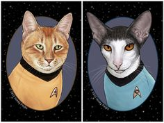 "Captain Kirk and Spock look ready to explore planets full of catnip thanks to Jenny Parks' cat ""Star Trek"" portraits."