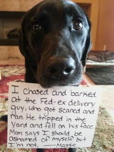 He delivered someone else's package...  Hehehe