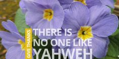 Give Thanks.  There is no one like Yahweh.
