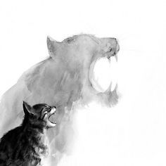 This picture just used black , wihite, gray those three color. It looks like chinese ink painting. I llike the content of this picture that shows a cat is not big, but cat will be strong likes a tiger. Also, this picture is simple and clear.