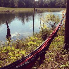 .@abbykk55 | If anyone needs me I'll be here. #treklight #johngrisham #beautifulday