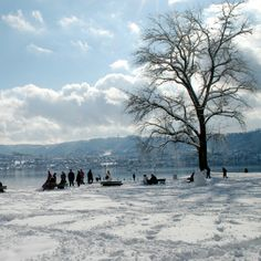 In winter, snow adds an extra touch of magic to the pretty Swiss city of Zurich. Book Cheap Flights, Book Flights, Switzerland Cities, Cheap Flight Tickets, Places Of Interest, City Break, Travel Pictures, Places To Travel, Beautiful Places