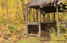 Old shack Gazebo, Outdoor Structures, Fine Art, House Styles, Home Decor, Homemade Home Decor, Kiosk, Pavilion, Visual Arts