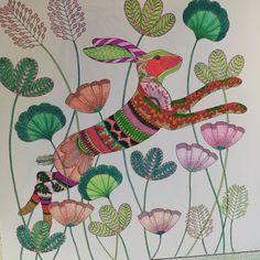 Millie Marottas Animal Kingdom Adult Colouring