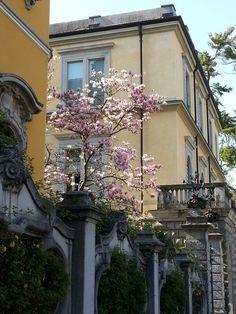 Visit Lake Maggiore