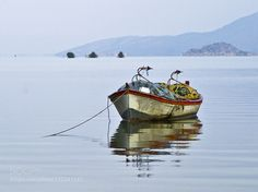 Alone by Metincan. Please Like http://fb.me/go4photos and Follow @go4fotos Thank You. :-)