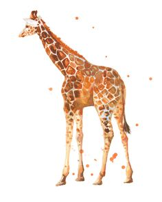giraffe, african animals, wildlife, cute baby giraffe, nursery animals, safari Art Print