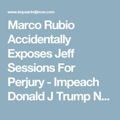Marco Rubio Accidentally Exposes Jeff Sessions For Perjury - Impeach Donald J Trump Now!