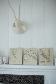 @Ashley Cohron and I want to try this diy project! Dried Herbs!  Thanks @designsponge and @bbbcraftsisters
