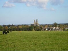 I learned to ride my horse in this field as a child. Kingdom Of Northumbria, Travelocity Gnome, East Yorkshire, England And Scotland, My Horse, British History, Adventure Is Out There, Cathedrals, Castles