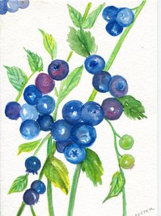 Blueberries Watercolor Painting Original, Small Fruit Art Home Decor, Food, Kitchen Decor, 5 x 7, watercolors paintings original
