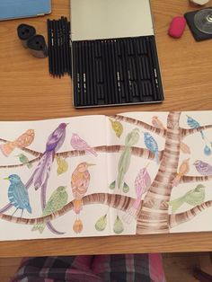 Completed double page bird colouring. Millie Marotta' tropical wonderland colouring book for adults