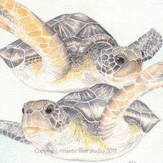 Turtle Art Underwater Ocean Sea Scuba Diving Print Reproduction.