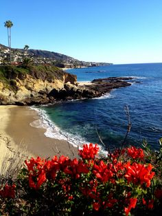 Laguna Beach, California. Gorgeous beach!