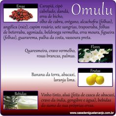 Infográfico_Omulu_Ervas-Frutas-Flores-Bebidas