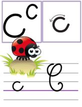 Affichage alphabet pour la classe Cursive Alphabet, Alphabet Writing, Police Cursive Standard, Murals For Kids, French Classroom, Teaching French, Kindergarten Activities, Preschool, Free Printables