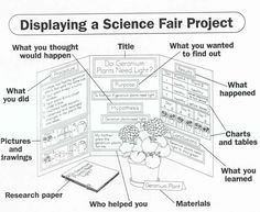 Displaying a Science Fair Project. I know I'll  need this soon for Kams school projects!!
