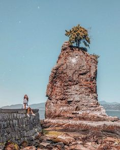 Hanging out in Stanley Park  Did you know? Siwash Rock between Third Beach and the Lions Gate Bridge is a 32-million-year-old sea stack. @hannahrheaume