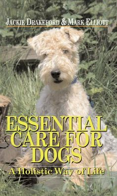 Essential Care for Dogs: A Holistic Way of Life by Jackie Drakeford et al., http://www.amazon.co.uk/dp/1904057454/ref=cm_sw_r_pi_dp_quEPtb0PSB7A2