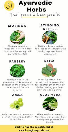 Ayurvedic Hair Care, Ayurvedic Healing, Ayurvedic Recipes, Ayurvedic Herbs, Healing Herbs, Herbs For Hair Growth, Natural Hair Growth, Natural Hair Styles, Hair Growth Food
