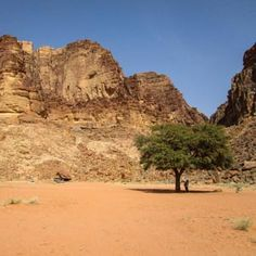 A blog about the 5 pictures you want to take in Wadi Rum desert. Lawrence Spring, red sand dune, Khazali canyon, Um Fruth rock bridge and Anfishiyyeh inscriptions.