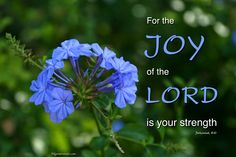 """Nehemiah """"For the Joy of the Lord is your strength. Biblical Quotes, Bible Verses Quotes, Scriptures, Lord Is My Strength, Scripture Pictures, Gift From Heaven, Joy Of The Lord, Lord Is My Shepherd, Faith"""