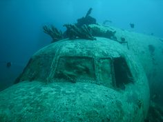 Sunken airplane - I saw this snorkeling it was amazing