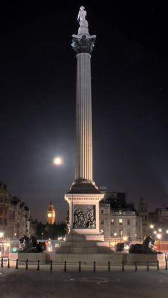 Nelson Column on Trafalgar Square - London, England Trafalgar Square, Modern Landscaping, Hydrangea Landscaping, Driveway Landscaping, Landscaping Plants, Landscaping Ideas, Yorkshire, London Night, London United Kingdom