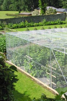 Our fruit cages are made from diameter high-strength steel with a wall thickness. This results in a framework which is up to 30 stronger than other fruit cages available in the UK Veg Garden, Vegetable Garden Design, Garden Cottage, Fruit Garden, Garden Trees, Cozy Backyard, Backyard Farming, Dog Friendly Garden, Hydroponic Gardening