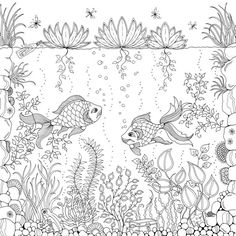 Beautiful Adult Coloring Page ..