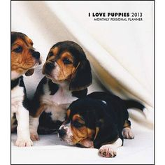 I Love Puppies Planner: Everyone can benefit from the joy of puppies in their lives. They're loveable, playful, sweet, snuggly, curious, adorable, and precious. Let the charming, precocious, darling, wonderful, loveable Puppies in this calendar bring joy to your life.  $7.99  http://www.calendars.com/Puppies/I-Love-Puppies-2013-Planner/prod201300004376/?categoryId=cat00339=cat00339#