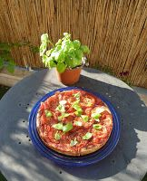 Gemüse & Naschen: Erste Ernte beim gesäten Basilikum