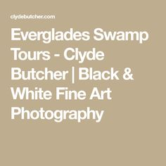 Everglades Swamp Tours - Clyde Butcher | Black & White Fine Art Photography