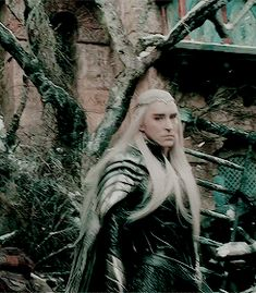 More of Thranduil walking because I swear to you everything this man does is perfect