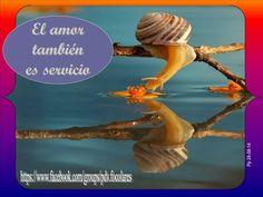 #Pasapalabra 28-08-14 * El amor también es servicio*