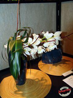 Ikebana  by fotoproze, via Flickr