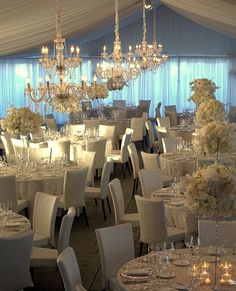 Tablescape ● white shimmer