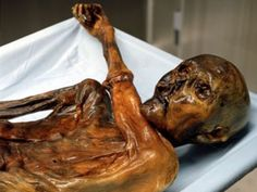 10 Famous Dead Bodies You Can Visit:  1 - King Tut 2 - Saint Bernadette 3 - The Soap Lady 4 - Vladimir Lenin 5 - Lady Dai 6 - The Ice Maiden 7 - St. Anthony 8 - The Ice Man 9 - Kim Jong-il 10 - The Elephant Man  📌📌 http://www.the-line-up.com/10-famous-dead-bodies-you-can-actually-visit/
