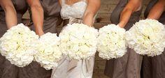 Love Me Do - NZ Wedding Blog - inspiration for New Zealand Weddings