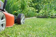 Moving Tip: Drain the gas and oil from gas-powered tools such as lawn mowers because most movers will not take them if full.
