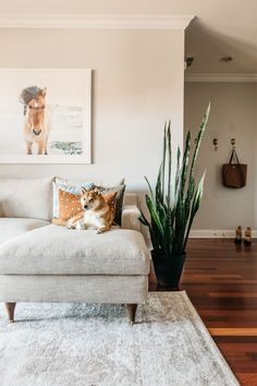coastal boho living room navy boho living room boho living room decor on a budget Living Room Decor On A Budget, Boho Chic Living Room, Eclectic Living Room, Living Room Modern, Rugs In Living Room, Living Room Interior, Living Room Designs, Living Room Inspiration, Furniture