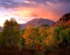 Utah in the Fall...best time to be there!