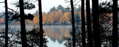 Early Morning At Fish Creek Pond State Park - View across the lake at the campground. Photographer: Penny & Dennis Wayne Location: Tupper Lake, NY US