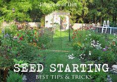 Best Tips & Tricks For Seed Starting Success - beginner help is here! http://empressofdirt.net/best-tips-tricks-for-seed-starting-success/