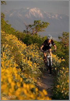 Spring Mountain Biking, above Orem, Utah