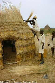 Men making a thatch hut in Kanem, Chad, Africa