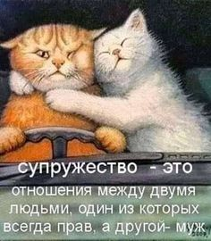 Hr Humor, Russian Humor, British Humor, Funny Phrases, Clever Quotes, Positive Words, Love Poems, Adult Humor, Just For Laughs