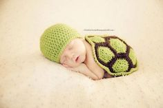 Turtle Shell with Matching Hat